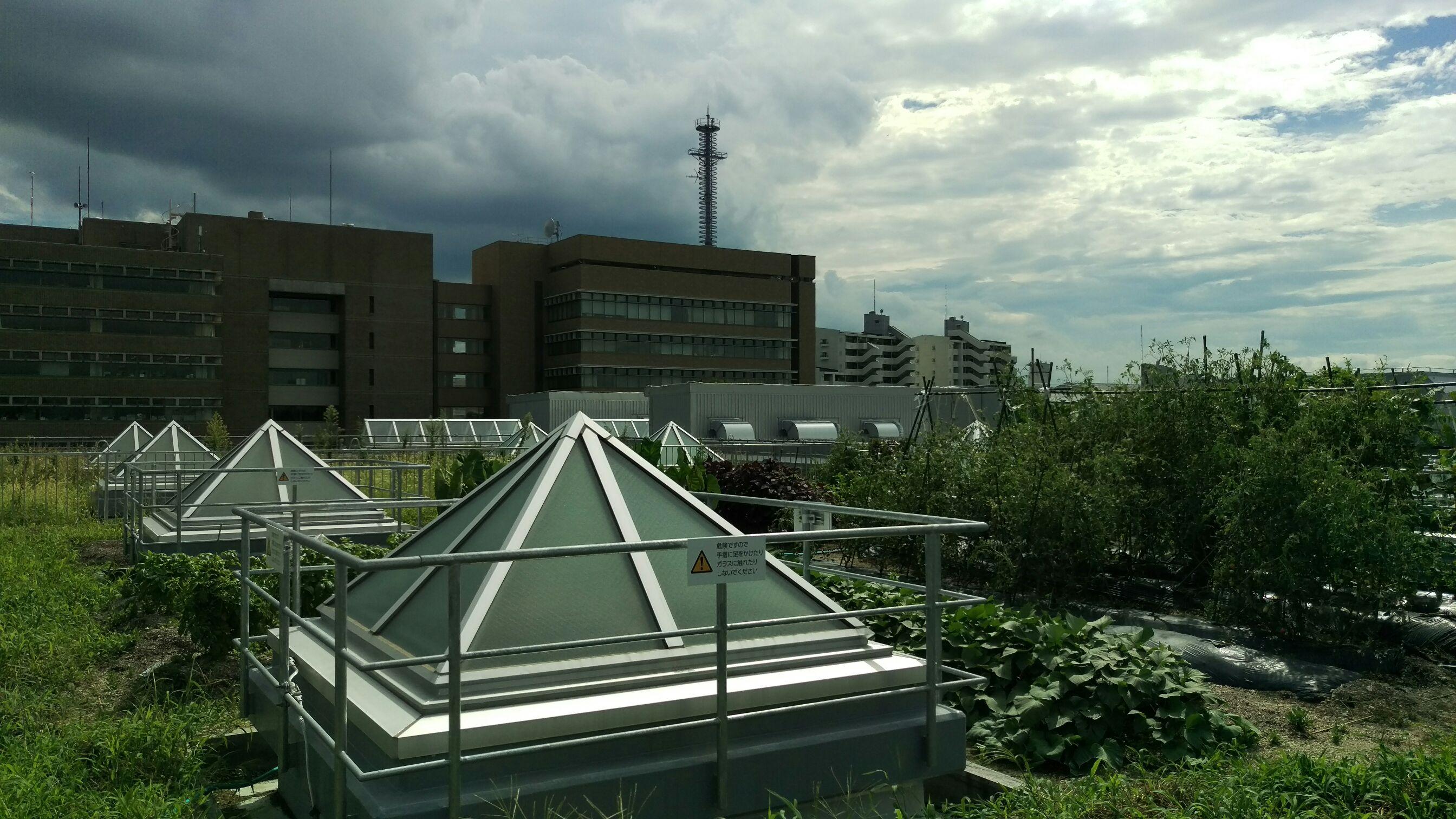 武蔵野クリーンセンター視察